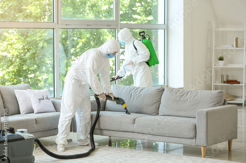 Fotografering Workers in biohazard costume removing dirt from sofa in house