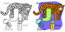 English Alphabet Coloring Book For Children. Letter J Is For Jaguar, Jellyfish, Juice. Vector Illustration.