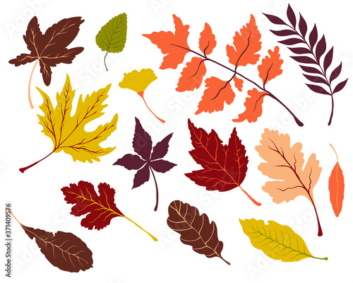 Fotomural Set of vector autumn bright leaves