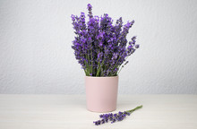 Romantic Background. Fresh Natural Lavender In A Pink Cup Against A White Wall Background. Side View, Space For Text.
