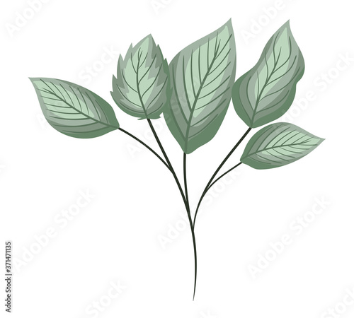 Canvastavla green leaves painting design of Natural floral nature and plant theme Vector ill