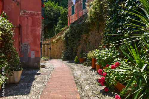 Fotografia Glimpse of the medieval sea town on the shore of the Gulf of the Poets with a ty