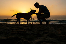 Silhouette Man Spending Leisure Time With Dog At Beach During Dawn
