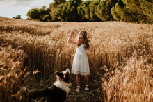 Girl Having Fun With Border Collie Dog In Wheat Field