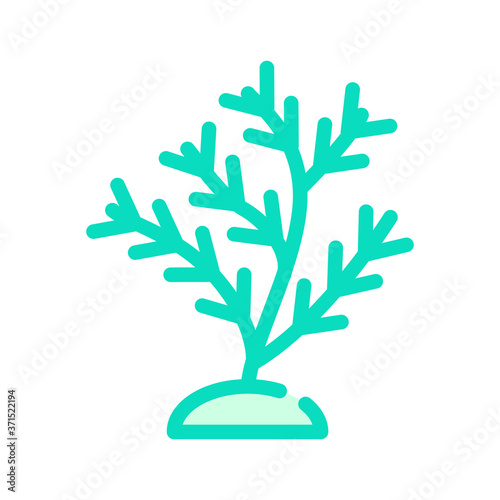 Fototapety, obrazy: aquatic coral color icon vector isolated illustration