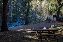 Picnic Bench Sits At The Edge Of A Campground At Switzer Falls In The Angeles National Forest Outside Of Los Angeles, California, USA