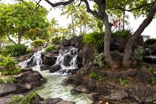 Cozy Corner Of An Urban Park With Tropical Plants And Waterfall. Honolulu, Waikiki, Oahu