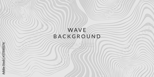 Fototapeta abstract white line wave background