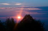 Zachód słońca pomiędzy szczytami drzew