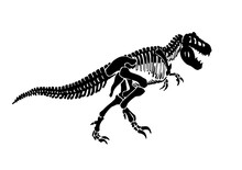 Vector  Silhouette Of Tyrannosaurus Skeleton Isolated On White Background,graphical  Illustration