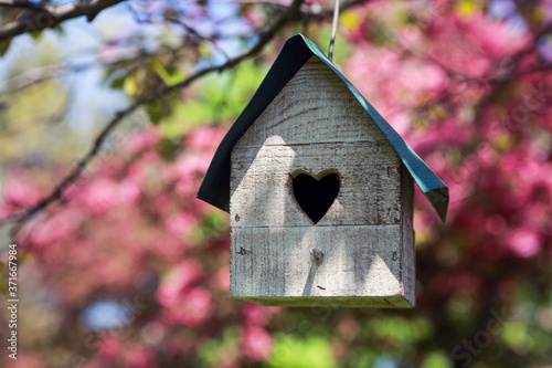 Birdhouse with heart shaped opening  hanging in an apple tree in spring Fotobehang