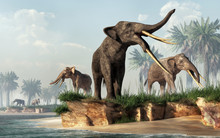 A Herd Of Stegotetrabelodons Foraging On The Shore. Stegotetrabelodon Is An Extinct, Four Tusked, Prehistoric Cousin Of The Elephant, A Type Of Gomphothere Of The Micoene. 3D Rendering