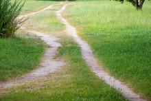 草原の中をのびる二本の細い道