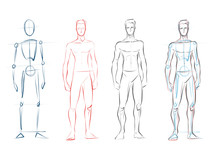 Vector Male Human Body Drawing...