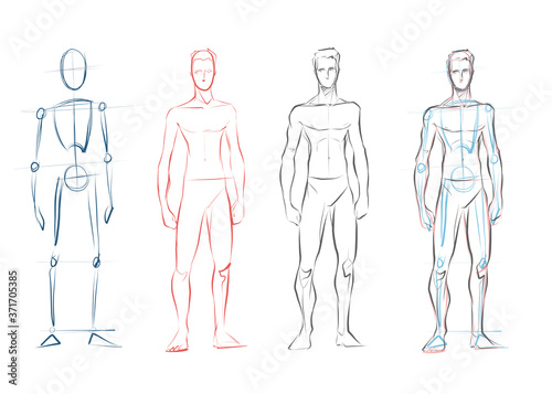 Vector male human body drawing sketches Canvas