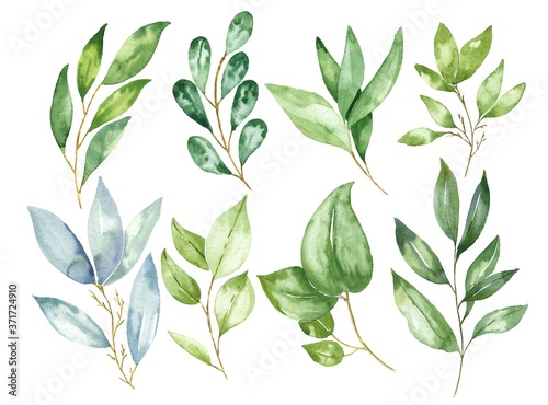 Hand drawn watercolor leaves and branches isolated on white background Canvas Print