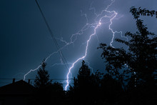 Long, Branched, Powerful Lightning Bolts Strike Down Behind The Trees