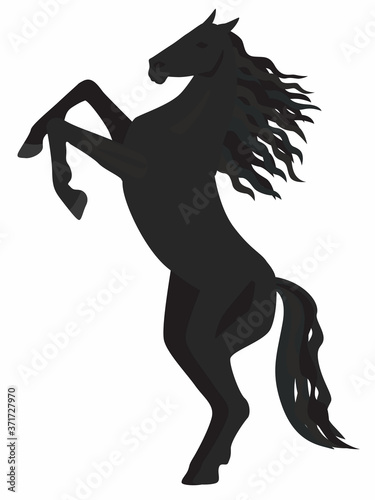 Photo Black horse on its hind legs. Vector graphics. Isolated image