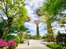 Popular Tourist Destination Ga...