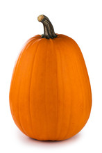 One Tall Orange Pumpkin