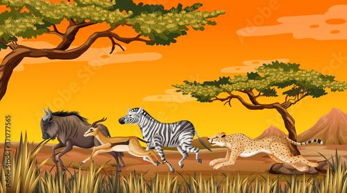 Slika na platnu Wild animal running Savanna
