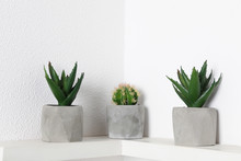 Beautiful Artificial Plants In...