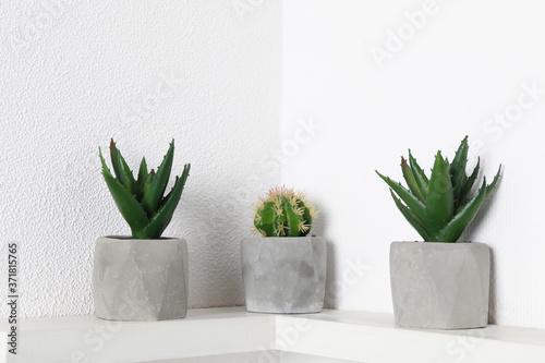 Tablou Canvas Beautiful artificial plants in flower pots on shelf