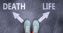 Death And Life As Different Choices In Life - Pictured As Words Death, Life On A Road To Symbolize Making Decision And Picking Either Death Or Life As An Option, 3d Illustration