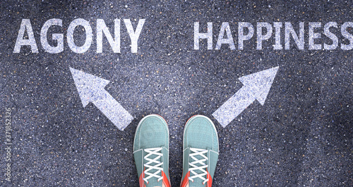 Photo Agony and happiness as different choices in life - pictured as words Agony, happ