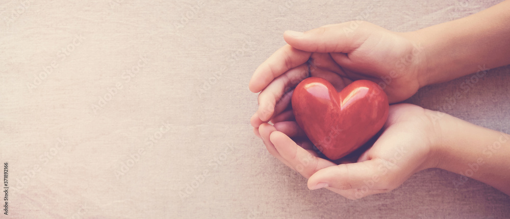 Fototapeta hands holding red heart, health care, love, organ donation, family insurance,CSR,world heart day, world health day, wellbeing, gratitude, be kind,be thankful concept