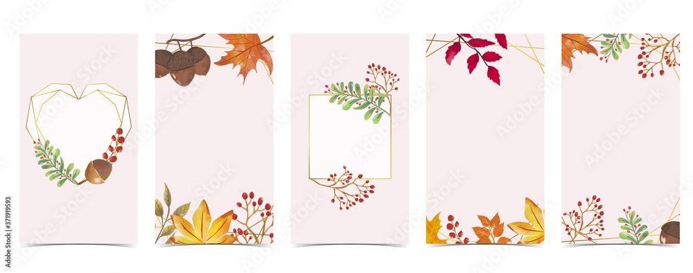 Fototapeta Autumn background for social media.Set of instagram story with maple,leaf
