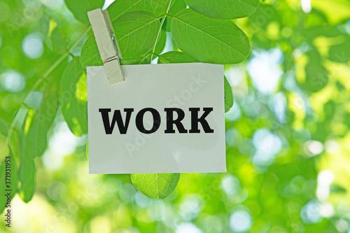 WORK Fototapet