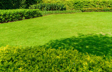 Landscape Design For Background, Peaceful Garden, Green Garden And Lawn, Green Lawn, The Front Lawn For Background, The Beauty Of The Decorated Garden, Newly Cut Lawn Lush Green With Morning Sunlight.