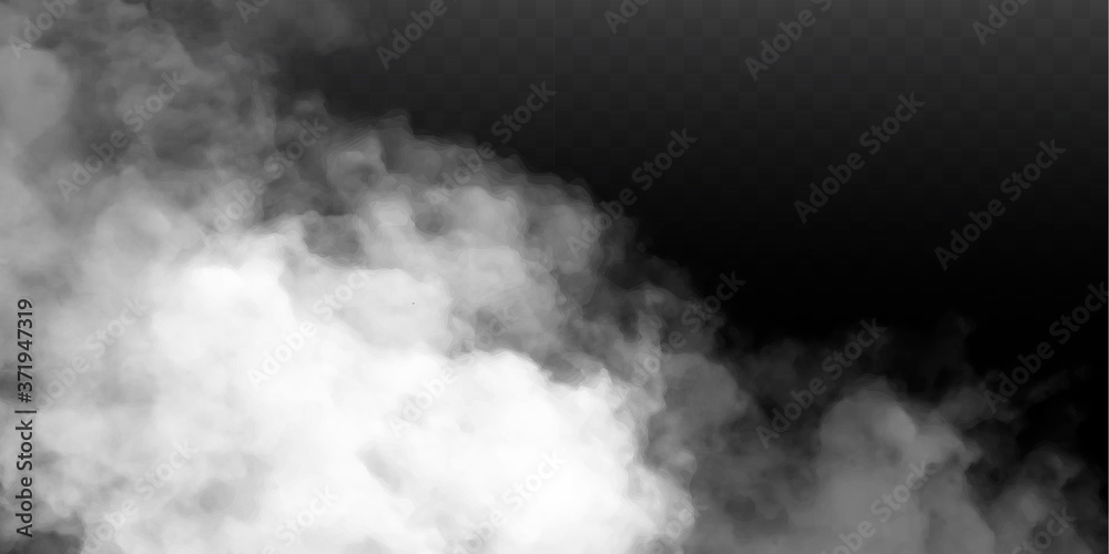 Fototapeta Fog or smoke isolated transparent special effect. White vector cloudiness, mist or smog background. Vector illustration