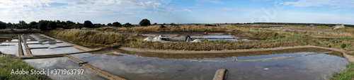 Fototapeta Panorama of the Guerande salt marshes in Loire-Atlantique