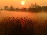 Fototapeta Na ścianę - wschód słońca