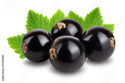 black currant with leaves isolated on white background with clipping path and fu Fototapete