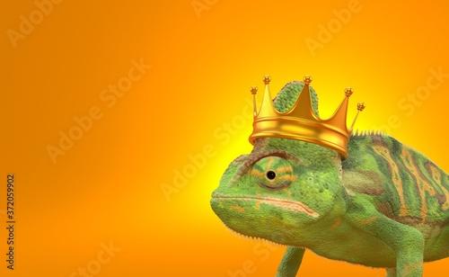 Valokuva Chameleon with crown