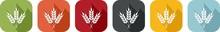 Coloured Icon Of Wheat Ears Fo...