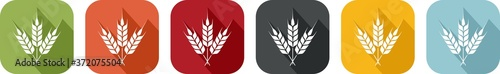 Fotografiet Coloured icon of wheat ears for agriculture