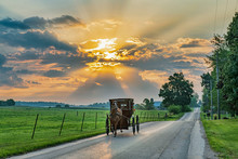 Amish Buggy On Rural Road Earl...
