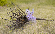 Purple Handmade Witch's Broom Lying On Grass.