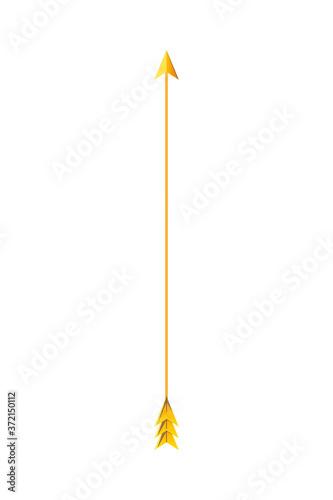 Slika na platnu Isolated gold arrow vector design
