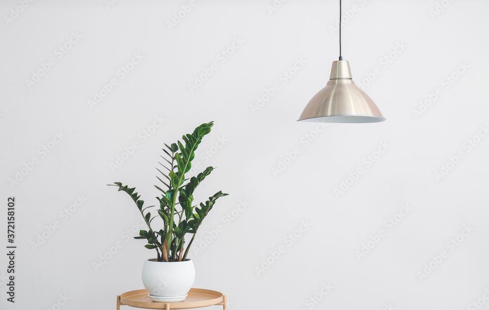 Fototapeta Stylish lamp hanging near light wall