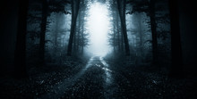 Dark Road Through Fantasy Forest At Night, Scary Halloween Landscape