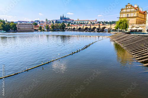 Obraz na plátně Ponte Carlo e Moldava, Praga