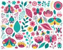 Colorful Butterflies Clipart