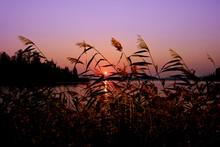 Summer Background - Sunset Ove...