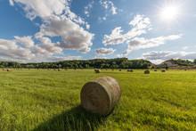 Un Paysage Rural En été