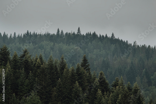 Fotografie, Obraz landscape of a mountain range